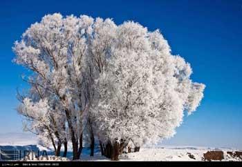تصاویر / طبیعت زمستانی اردبیل