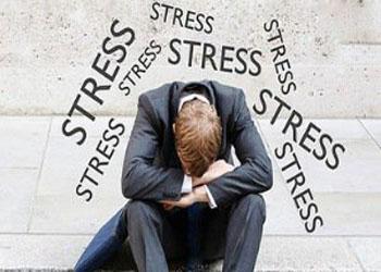 گیاهانی برای از بین بردن استرس