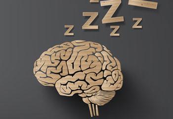 تقویت حافظه انسان با خواب!