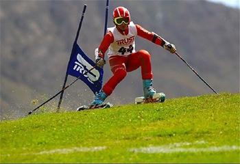 جنگل فندقلو شهرستان نمین به عنوان منطقه نمونه توریسم ورزشی معرفی میشود