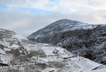 بارش برف در ۳ گردنه کوهستانی اردبیل/هیچ محوری مسدود نیست