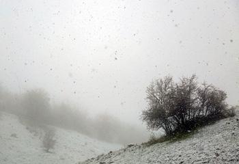 بارش برف بهاری در استان اردبیل؛ دمای هوای اردبیل تا ۱۲ درجه کاهش یافت